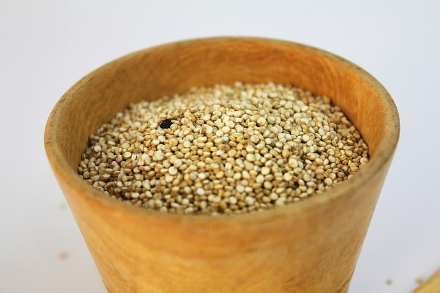 can dogs eat amaranth
