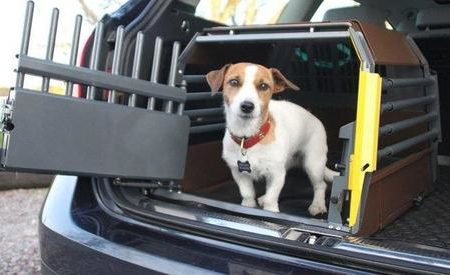 What are the safest dog crates for car travel