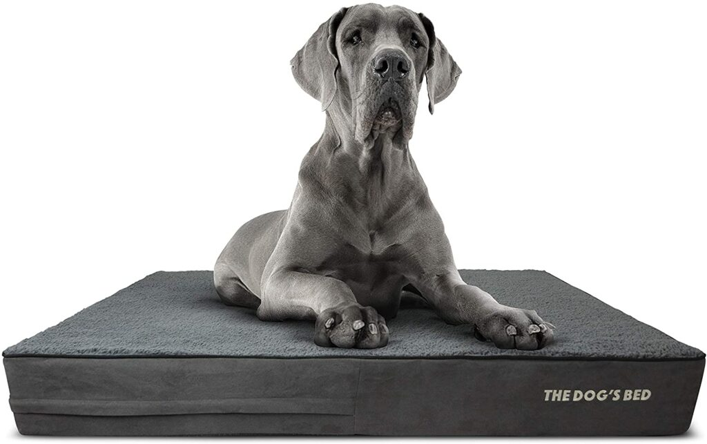best kennel bedding for dogs