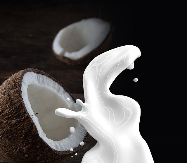 can dogs drink coconut milk