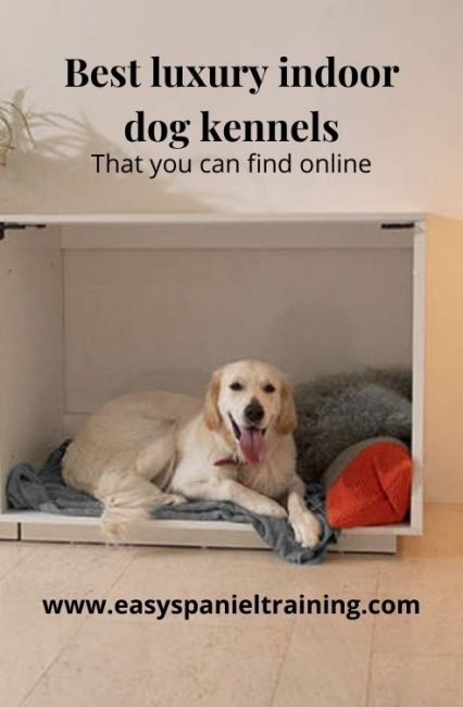 Best luxury indoor dog kennels