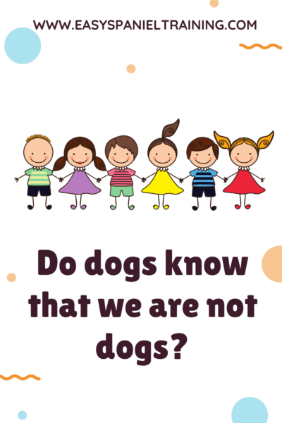 Do dogs know that we are not dogs_