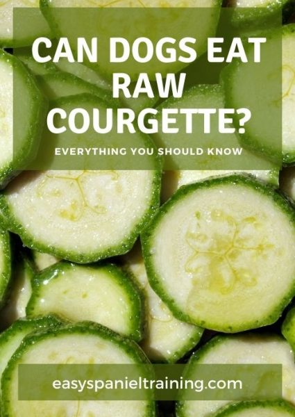 can dogs eat raw courgette