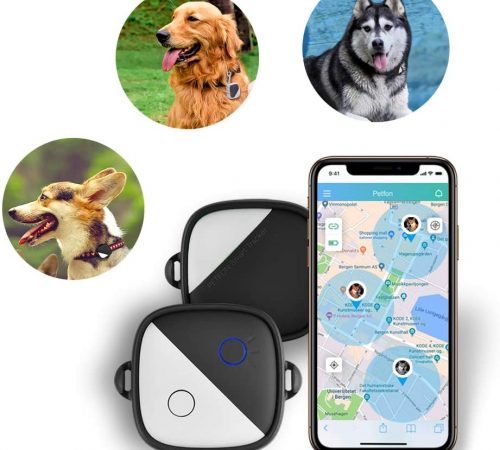 what do dog gps trackers do